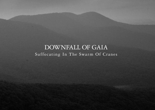 Downfall of Gaia 'Suffocating in the Swarm of Cranes' Album Review