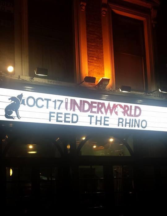 Feed The Rhino