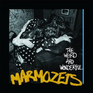 MARMOZETS Weird and Wonderful