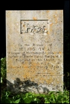 Ian Anderson - Jethro Tull grave