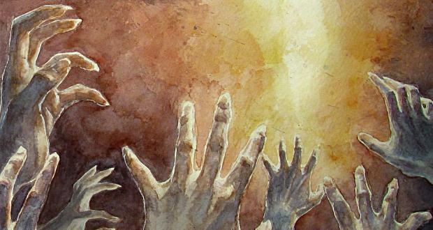 Review: Antipope – Denial / Survival
