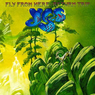 YES – Fly From Here Return Trip