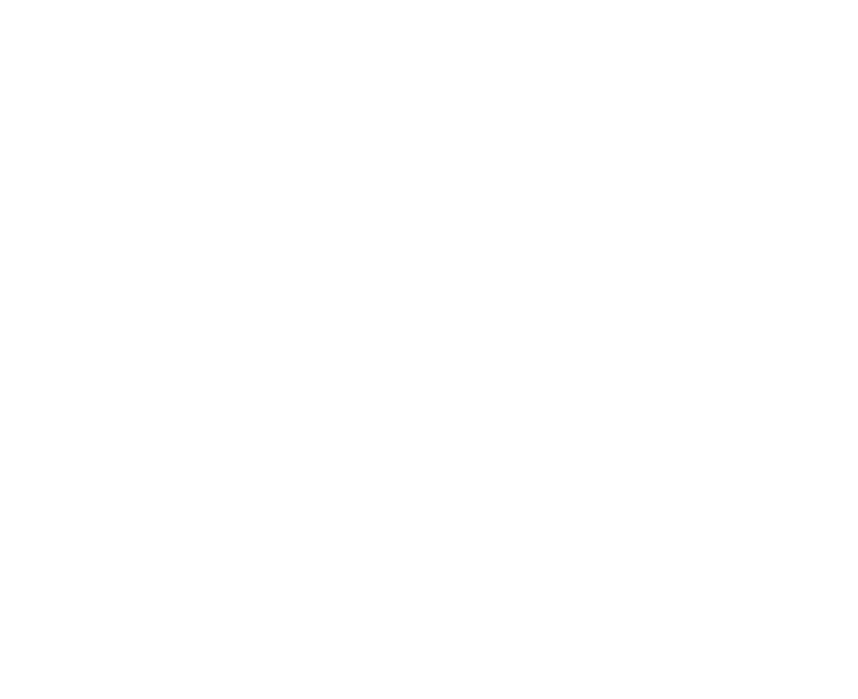 RAMzine
