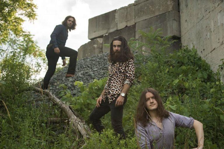 The Jailbirds Enter The Jungle