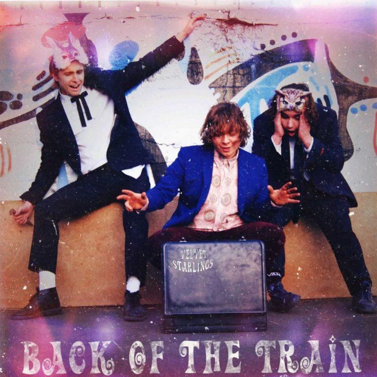 Velvet Starlings… Back of the Train